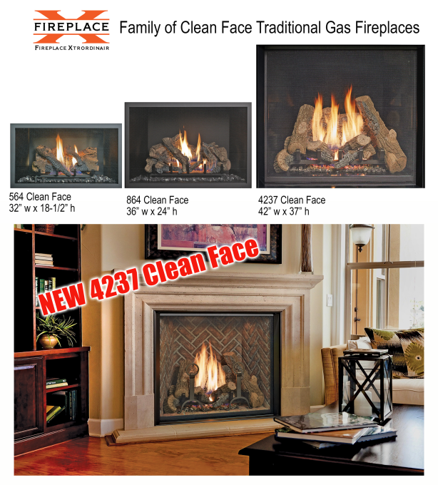 Clean Face Gas Fireplace Family